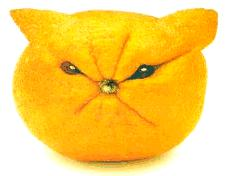 Sour-face-lemon