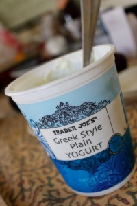 Trader Joe's Greek Style Plain Yogurt
