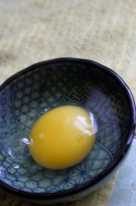 egg yolk in dish